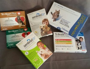 Do You Really Need To Give Your Dog Heartworm Medicine